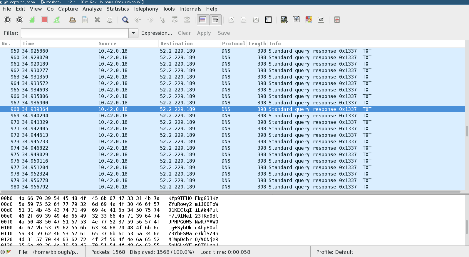 Viewing the packet capture in Wireshark